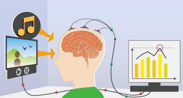 schéma détaillé reliant un écran au cerveau, lui même relié à un rapport des activités du cerveau