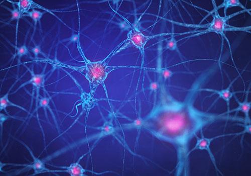 image représentant des connexions neuronales